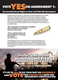 Vote Yes Amendment1