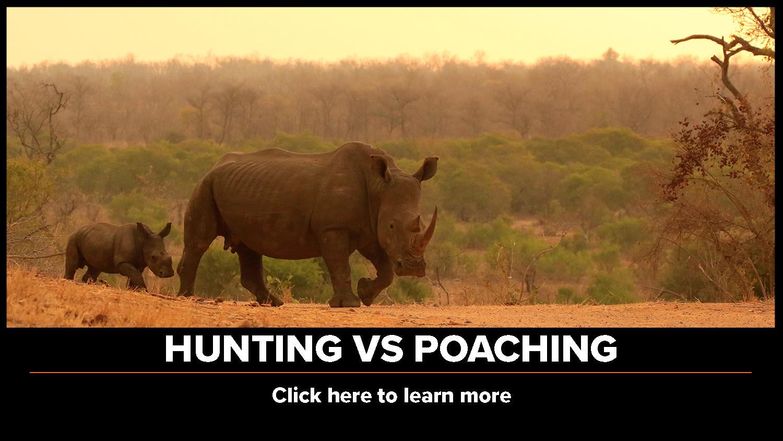 Hunting vs. Poaching