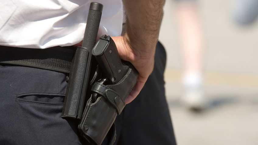 Hawaii: Honolulu Police Department to Destroy Guns Worth $500,000