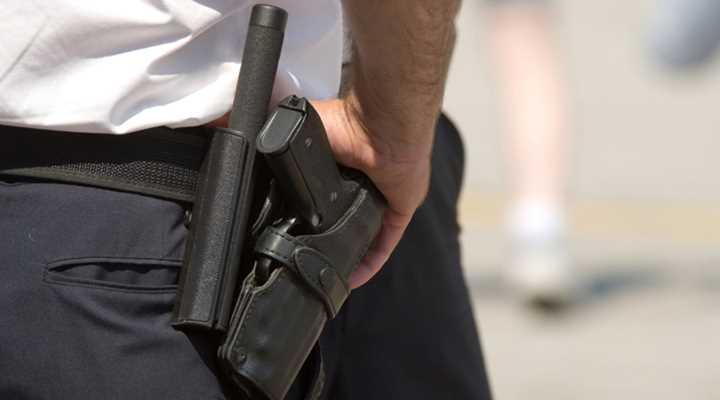 Hawaii: Committee Hearing Scheduled for Gun Bills
