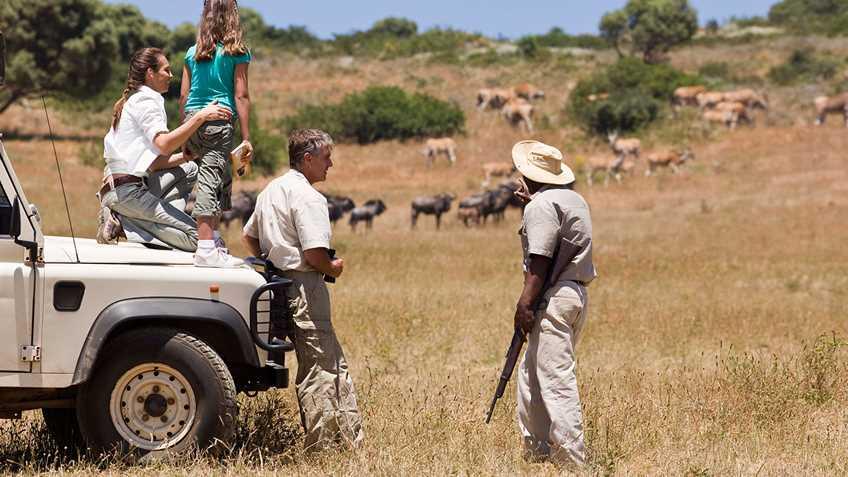 New York: Senate Recalls Anti-hunting Bill