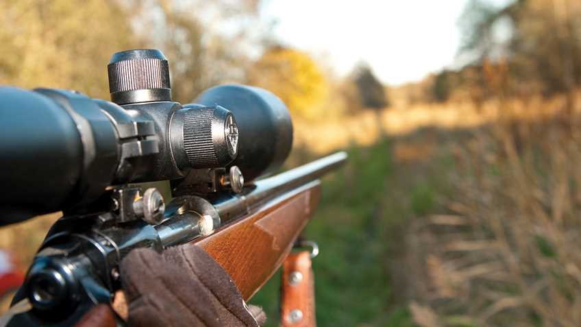 Virginia: Committee Rejects Sunday Hunting Bill