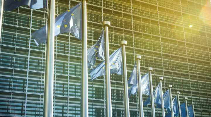 EU Council Adopts Gun Control Measures Passed by Parliament