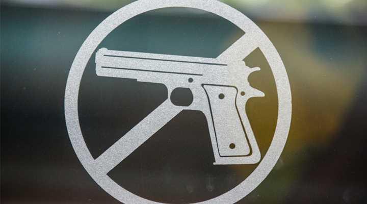 Professor: Take Granny's Gun