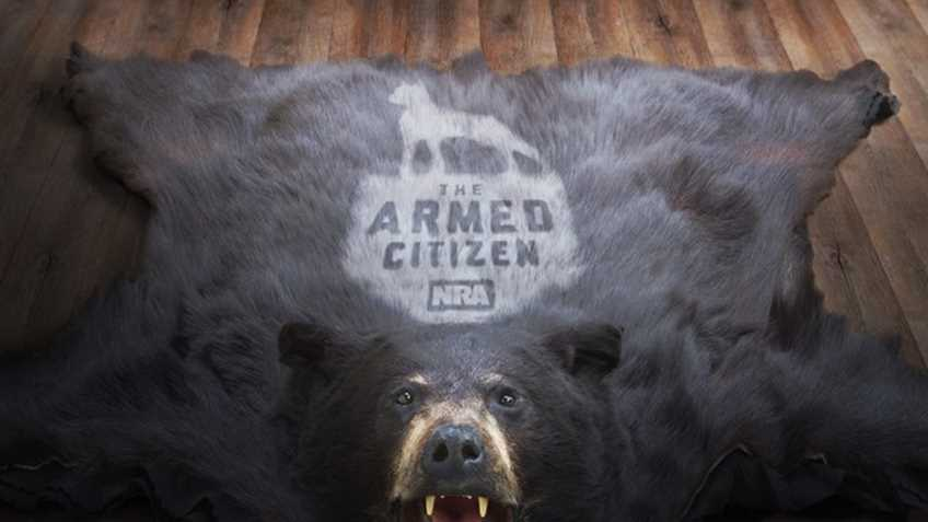 Hunter shoots, kills bear attacking friend on Southeast Alaska island
