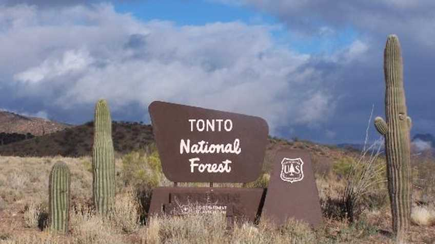 Arizona: Draft Forest Plan for the Tonto National Forest Addresses both Recreational Shooting and Hunting