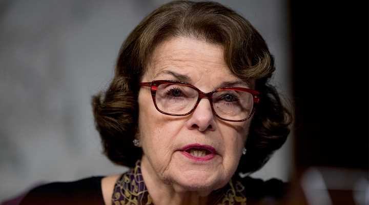 Dianne Feinstein Wants to Ban Commonly Owned Semi-Autos, Again!