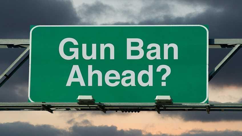 Banning Guns with the Ballot Box