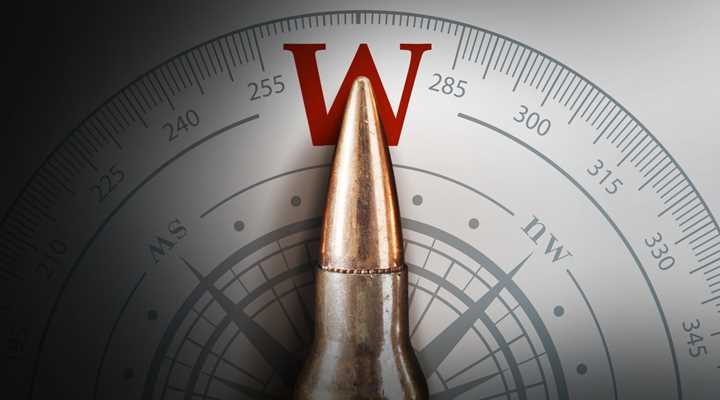 West Coast Plutocrats Target Washington State Gun Owners… Again  (Initiative 1639)