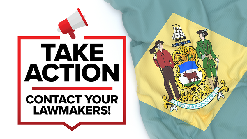 Delaware: Senate Passes Mag Ban & Handgun Licensing Bills