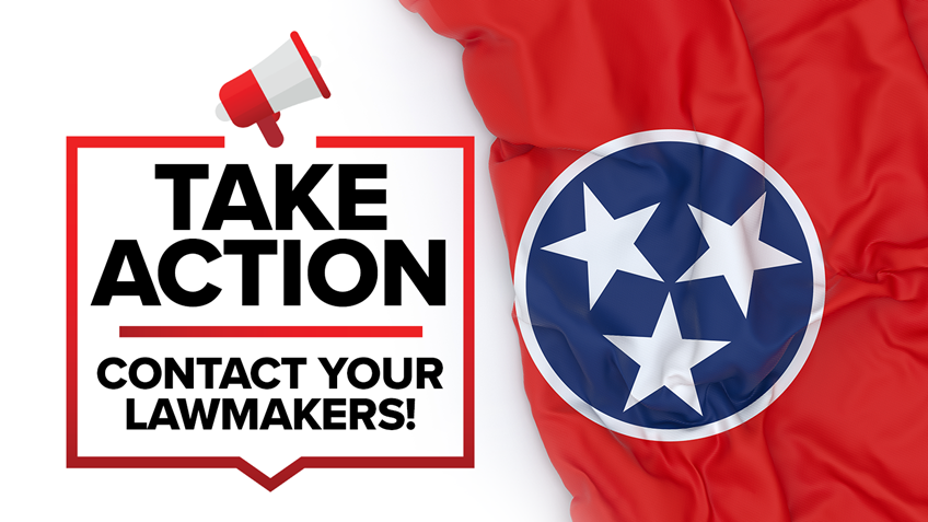 """Tennessee: """"Red Flag"""" and Other Gun Bills To Be Heard This week"""