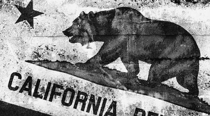 State of Ignorance: California Pushes False Information to School Kids on the Second Amendment