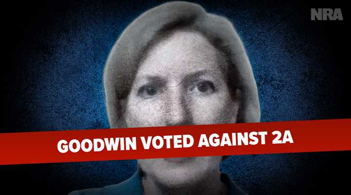 A Dozen New Pro-Second Amendment Laws Take Effect Today, Your State Representative Vikki Goodwin Voted Against ELEVEN of Them!